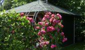 Ferienwohnung Wiebke und Dora St. Peter-Dorf Garten