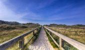 schöner Weg durch die Nordsee-Dünen